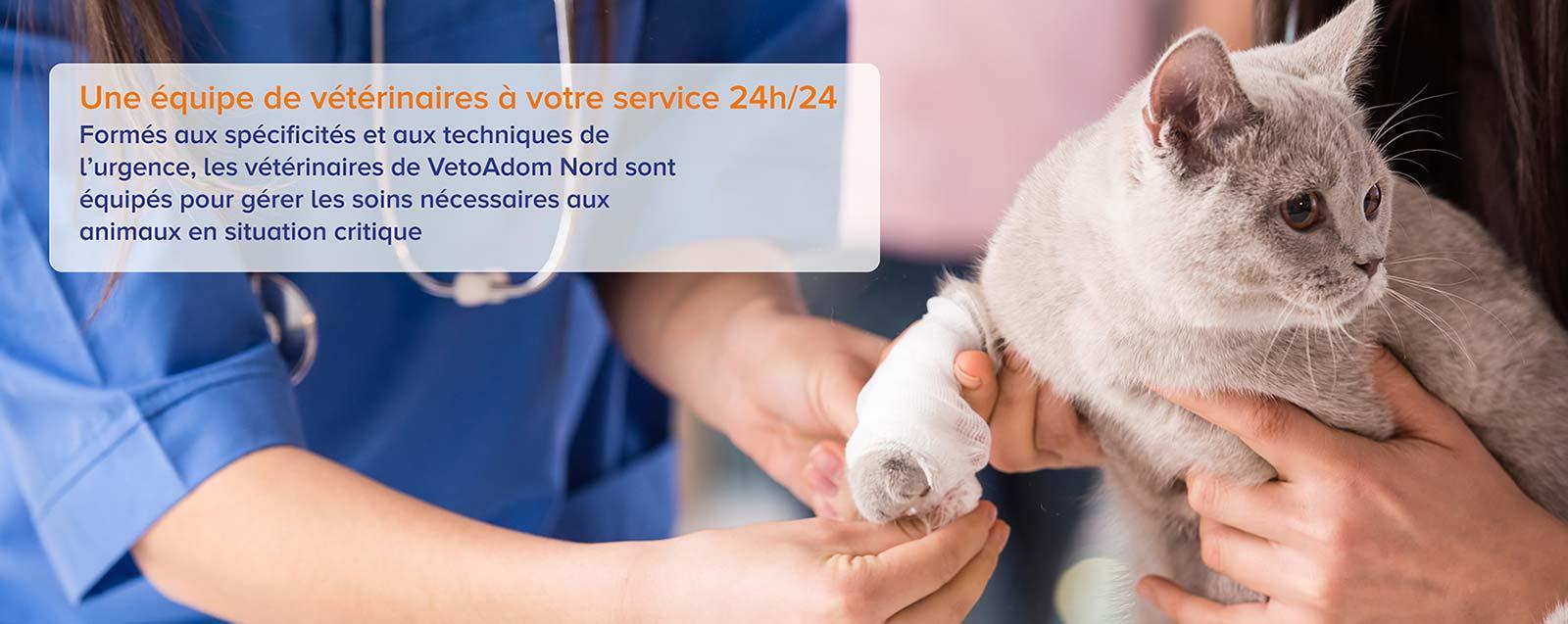 VETOADOM NORD - Urgence vétérinaire à domicile 10h/10 – Lille et